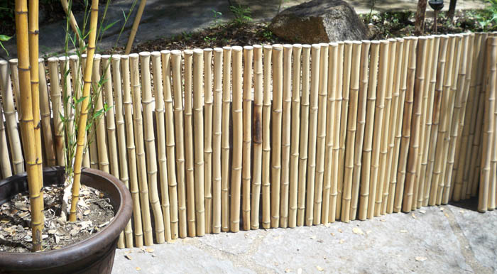 Bamboo Fecing from Jungle Supply Co
